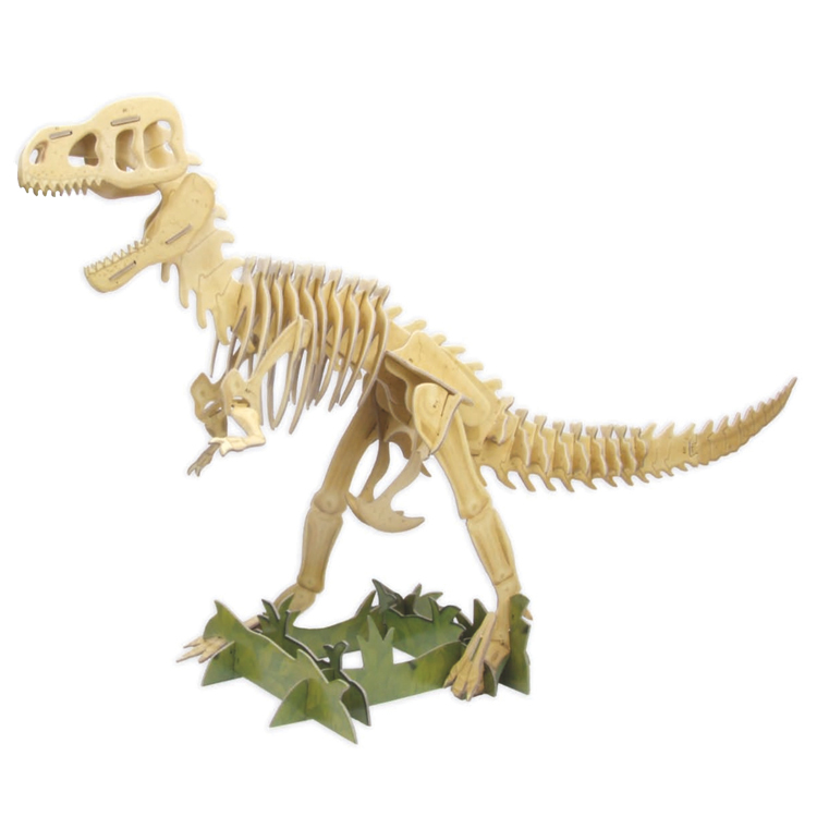 Build the T Rex Model